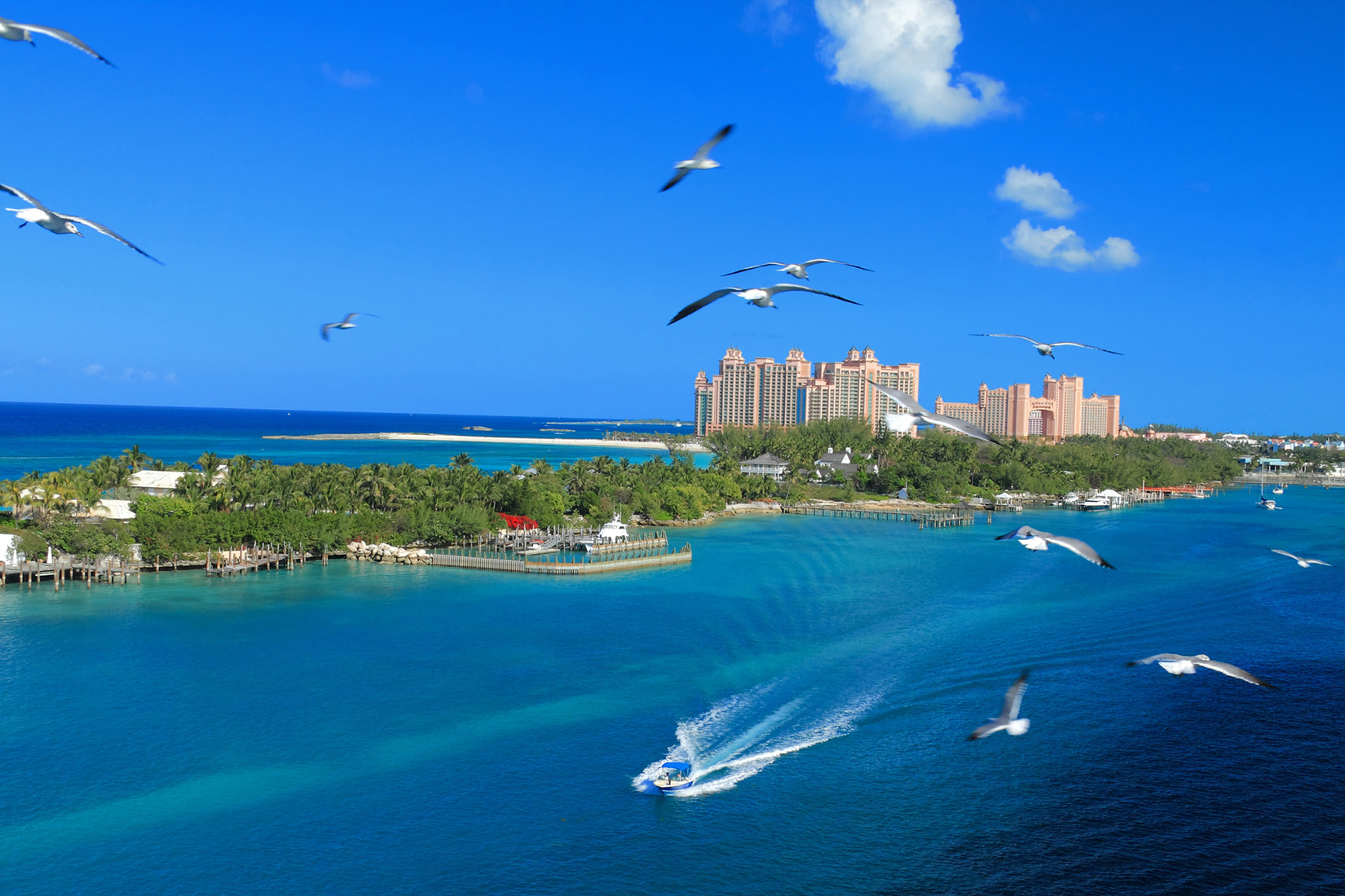 Bahamas announces new protocols aimed to eliminate need to quarantine    Cruise.Blog