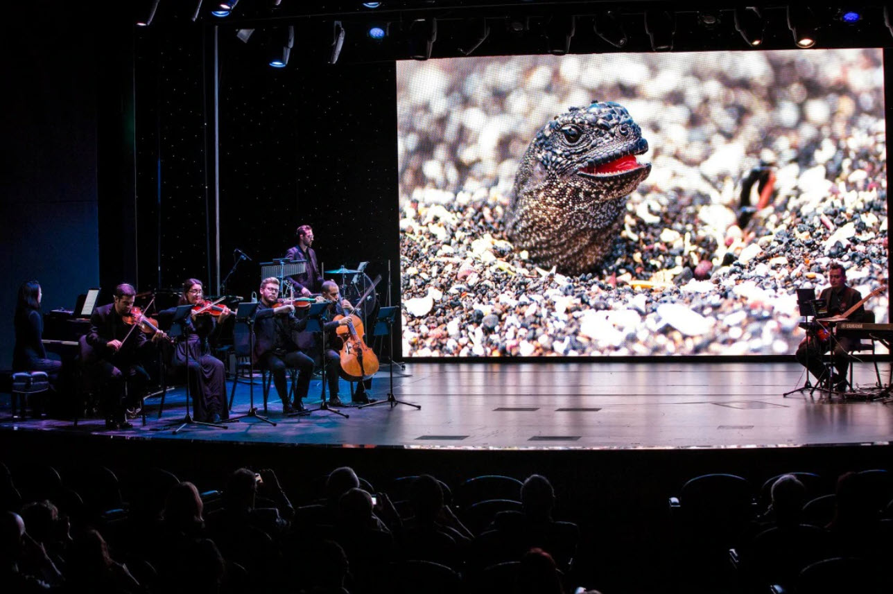'BBC Earth II in Concert' on a Holland America cruise ship (source: Holland America Line)