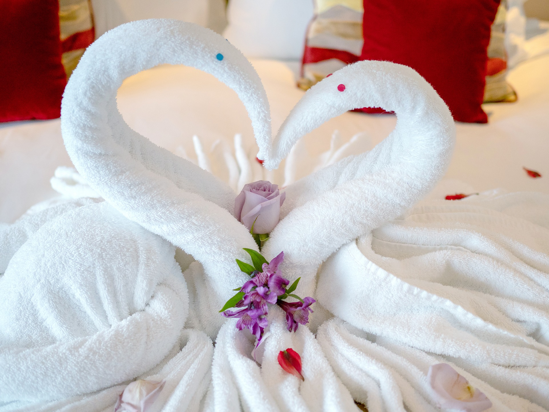 Romantic towel animal swans on a cruise ship (source: LAWJR, Pixabay)