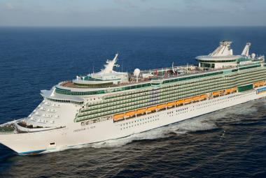 Freedom of the Seas aerial